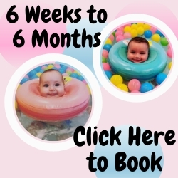Click to Book 6 Weeks to 6 Months